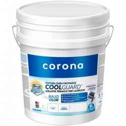 Pintura Coolguard x Cuñete